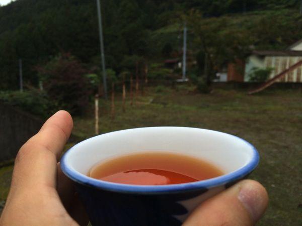 イケダハヤト お茶
